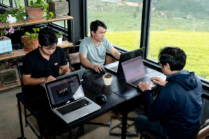 Remote working at Dalat - development team